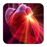 Чистка сосудов сердца