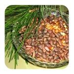 Кедровые орехи для похудения