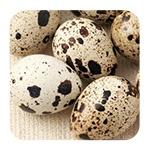 Яйца для похудения