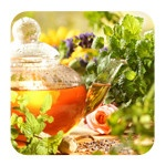 Фитотерапия и травы для похудения